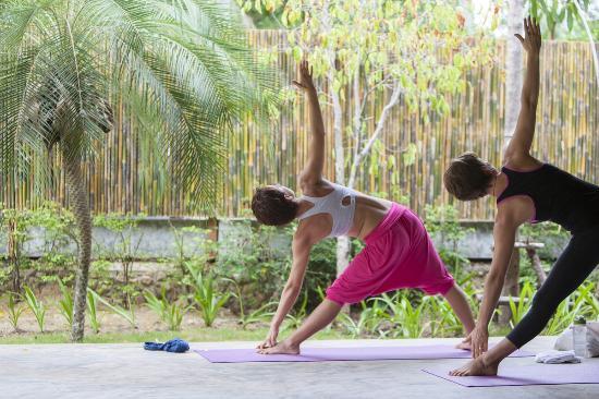 The Yogarden : yoga in the garden sala