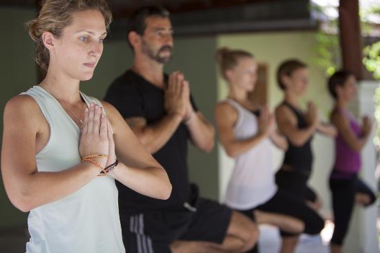 The Yogarden : balance