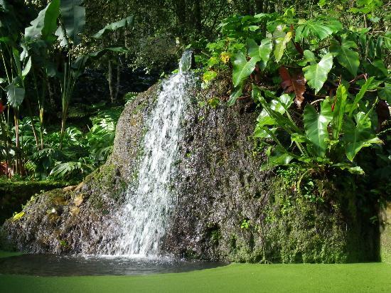 Cartago, Costa Rica: Wasserfall in der Anlage