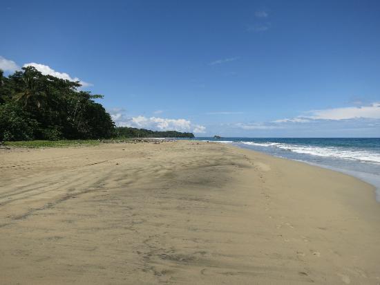 Camarona Caribbean Lodge: Der Strand