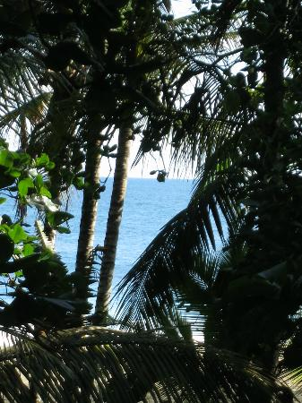 Camarona Caribbean Lodge: Blick vom Balkon