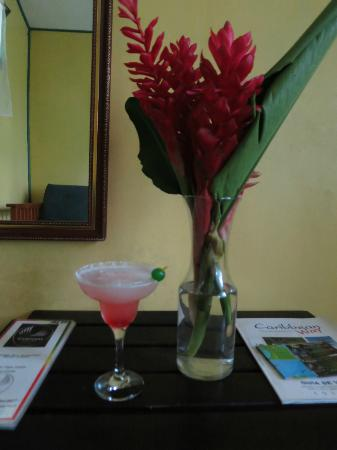 Camarona Caribbean Lodge: Begrüßungscocktail und Blümchen auf dem Zimmer