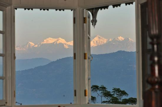 Glenburn Tea Estate: The view from our bedroom window.