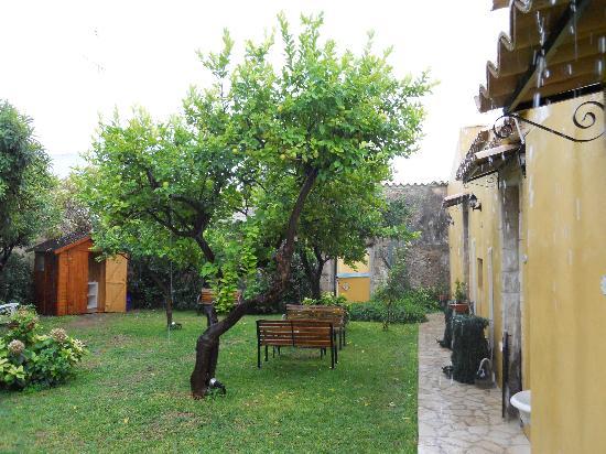Il Giardino del Barocco: Garden room veiw