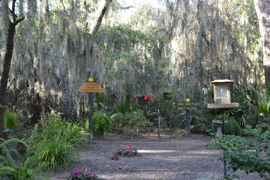 Jekyll Island Campground: Bird Sanctuary