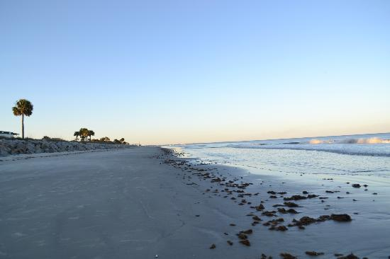 Jekyll Island Campground: East side