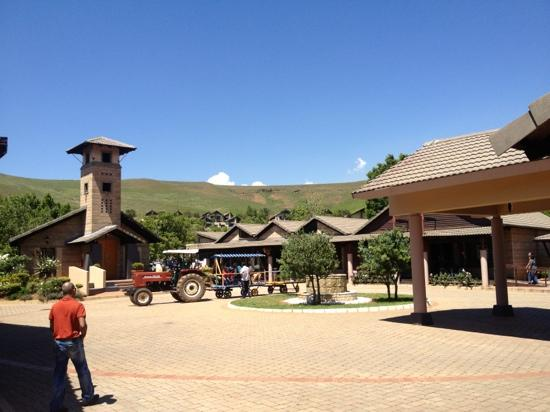 Alpine Heath Resort : Alpine Heath reception area