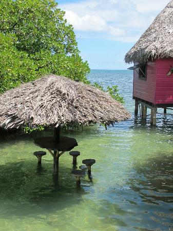 Urraca Private Island : La piscina natural mas hermosa