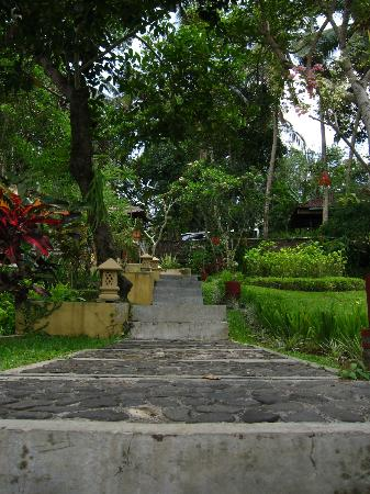Puri Bunga Resort and Spa: Garden around the hotel