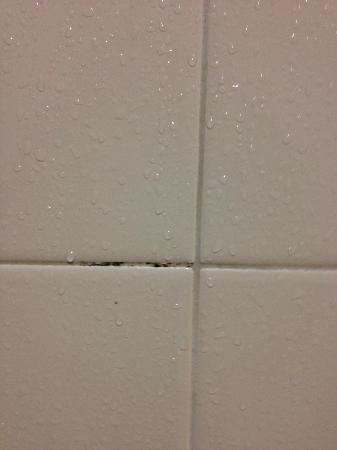 Deerfield Beach, Floride : Mold in shower