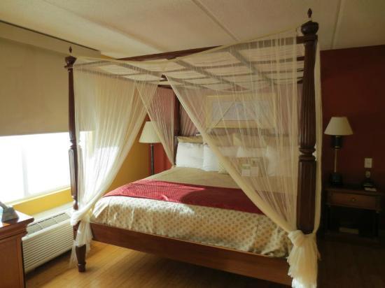 Wingate by Wyndham Atlanta/Buckhead : canopy bed