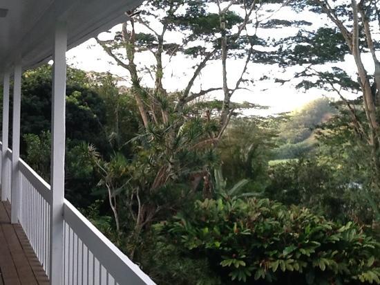 Hale Kua : view from lanai.