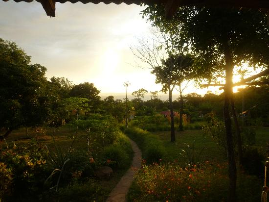 Finca Mystica: hammock view