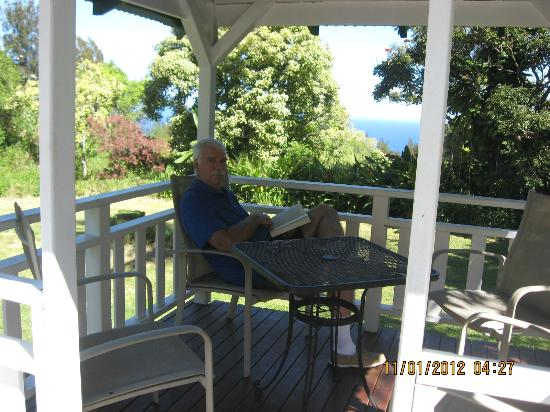 Waipio Wayside B&B: What a place to read a book!