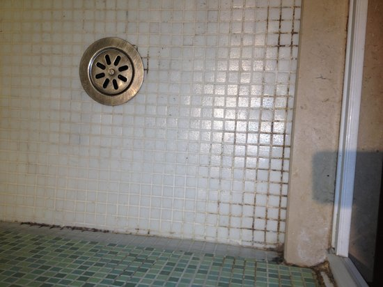 B&B Colosseo Suites: Shower