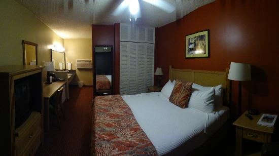 Caliente Tropics Resort: room