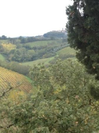 Agriturismo La Lucciolaia: The View from the Room Senape. San G at the top!!