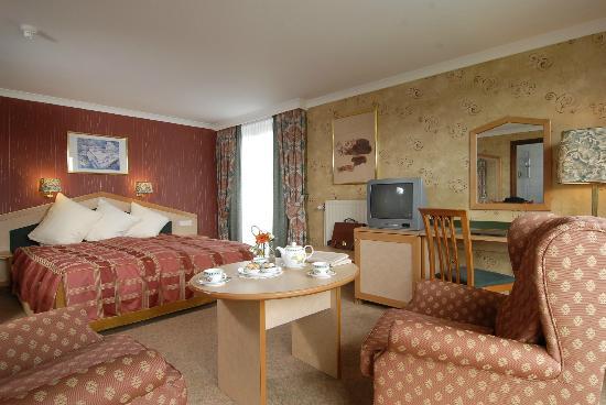 Slenaken, The Netherlands: Standard Room