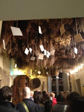 Aboca Museum: stanza dell'essiccazione delle erbe officinali
