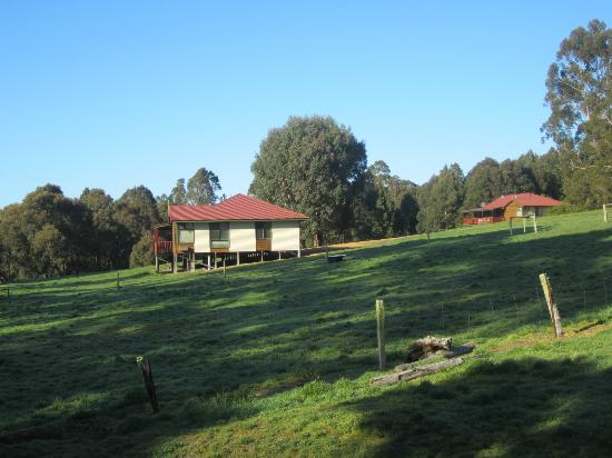 Chalets from grounds