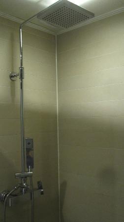 CF Hotel : Shower