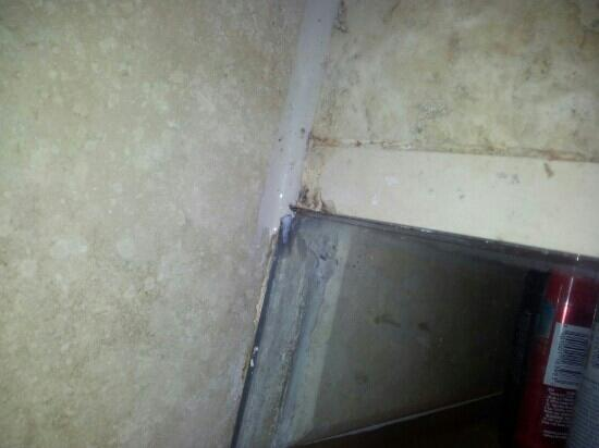 Holiday Inn Monterrey Valle: Mas hongos