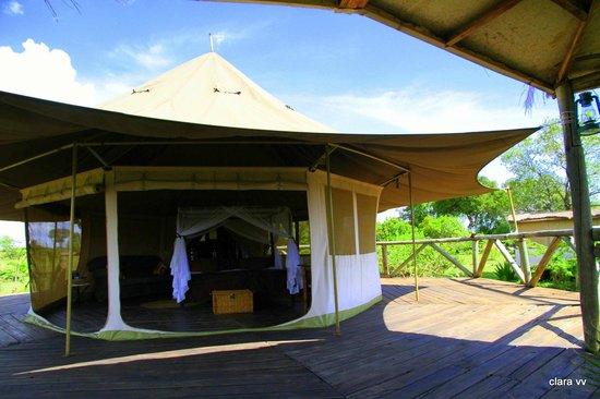 Cheetah Tented Camp: tienda 