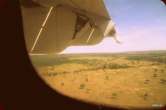 Cheetah Tented Camp: vistas desde la avioneta