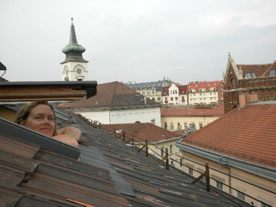 Hotel Kalvin House: Rooftop View