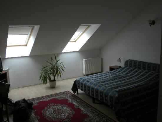 Hotel Kalvin House: Skylight Windos