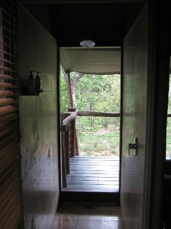 Kapama Buffalo Camp: view through shower into the bush