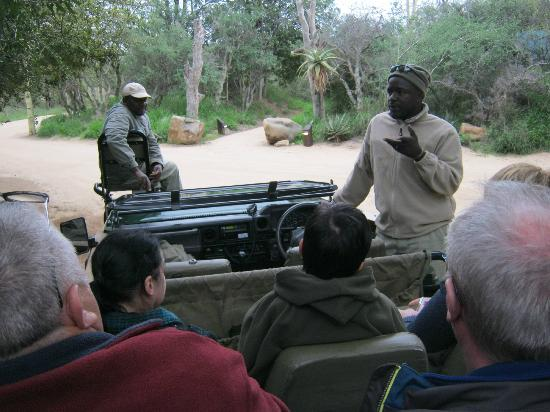 Kapama Buffalo Camp: start safari