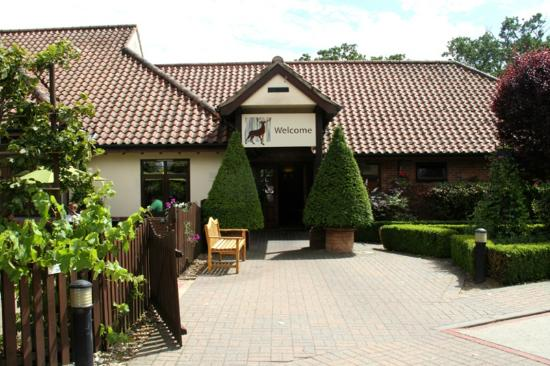 The Stag Bar: Breckland Lodge