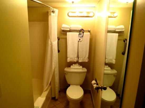 Fairfield Inn & Suites Dulles Airport Herndon/Reston: Bathroom