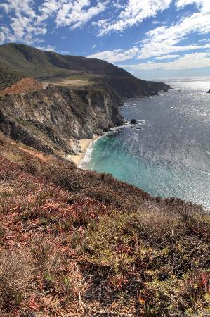Ragged Point Inn and Resort: Big Sur coastline