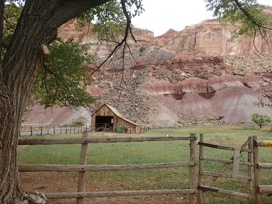 Notom Ranch Bed & Breakfast: Farm at Capitol Reef National Park