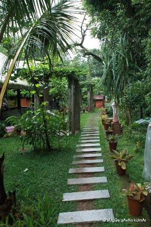 Wild Woods Spa and Resort: Path way around the cottages.