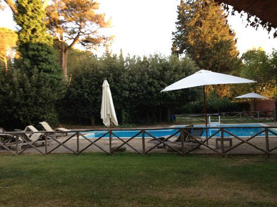 Residenza Le Versegge: La piscine