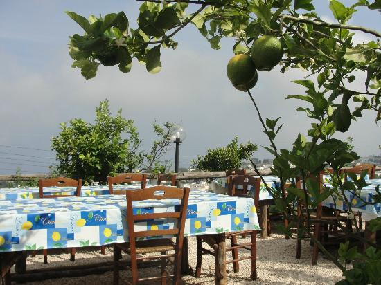 Agriturismo Terrammare: Outdoor eating area