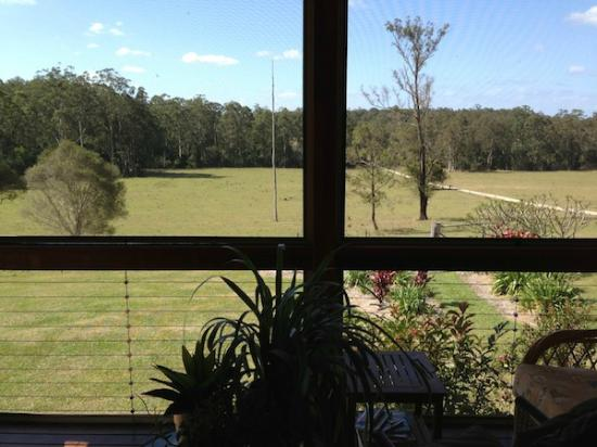 Cosy Cow Farmstay/Bed & Breakfast : View from verandah