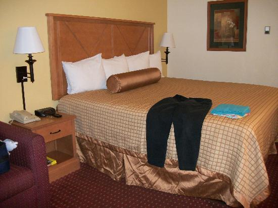 BEST WESTERN Dulles Airport Inn: Comfortable king-sized bed