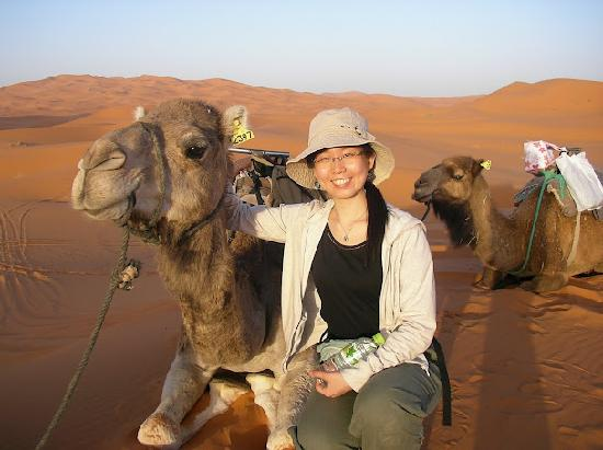 Riad Mamouche: Camel excursion