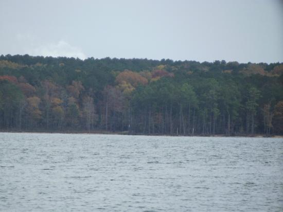 Jordan Lake State Recreation Area: View from visitors center