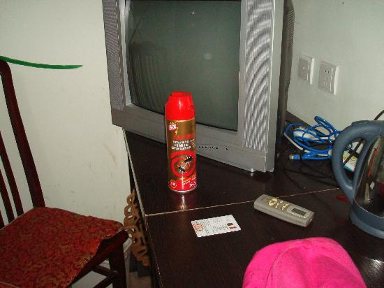 N.E. Hotel: staff use the anti ant spray when we were there???