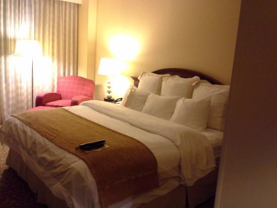 Auburn Hills Marriott Pontiac: my room
