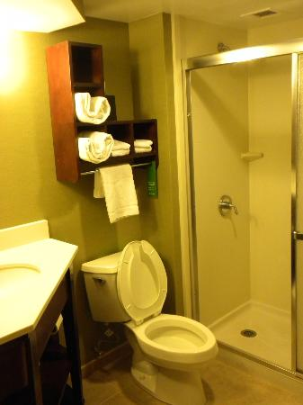 Hampton Inn Gastonia: Nice bathroom