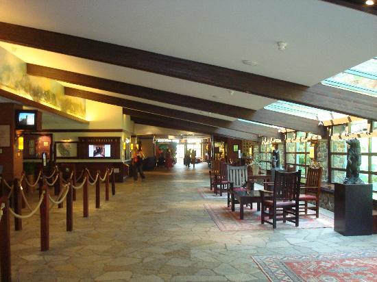 Disney 39 s sequoia lodge bild fr n disney 39 s sequoia lodge for Hotel sequoia lodge piscine