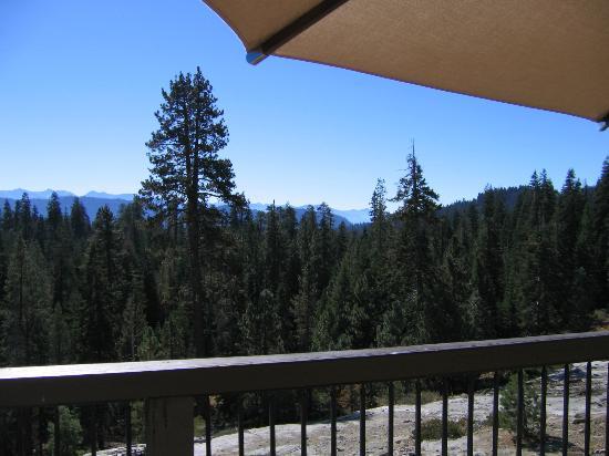 Montecito Sequoia Lodge & Summer Family Camp: Sun deck view
