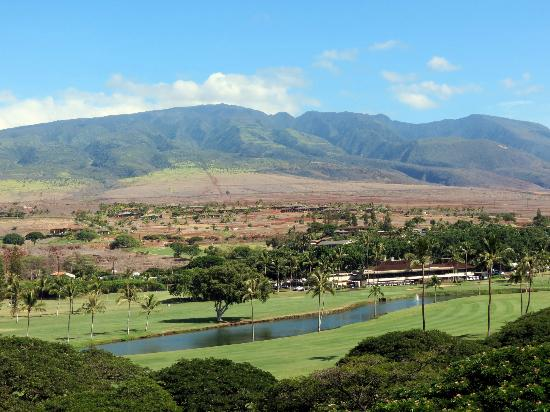 Westin Maui Resort And Spa: View from the cheap seats