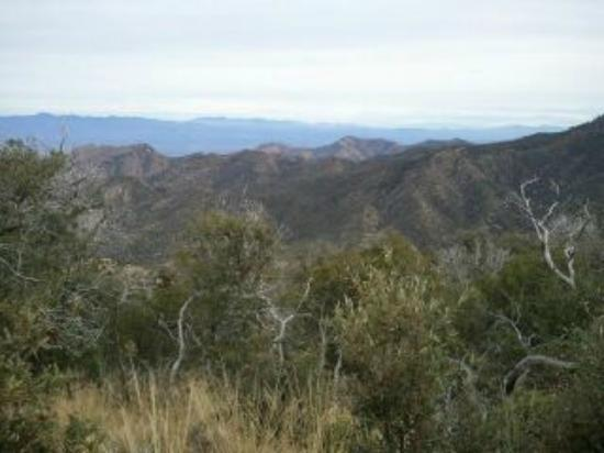 Santa Catalina Mountains: East side of Catalina Mountains